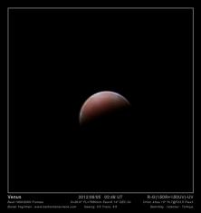 Venus Flea 3